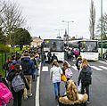 201512 bus scolaire 4.jpg