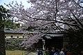 20160403 Himeji-Castle 3296 (26758531071).jpg