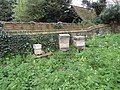 2018-04-24 Bee hive, Nature walk, Parish church of Saint Margaret, Church Road, Thorpe Market (3).JPG