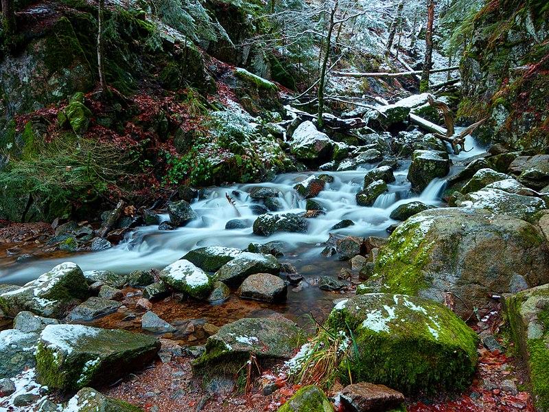 Rivière en pleine forêt 800px-2020-12-28_16-54-38_savoureuse-Lepuix