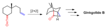 Figure 3. Tethered [2+2] reaction in Corey's total synthesis of (+) - Ginkgolide B