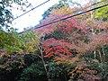 2 Minookōen, Minoo-shi, Ōsaka-fu 562-0002, Japan - panoramio (6).jpg