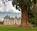 41700 Cheverny, France - panoramio (2).jpg