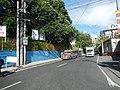 9600Santa Mesa, Manila Landmarks 27.jpg