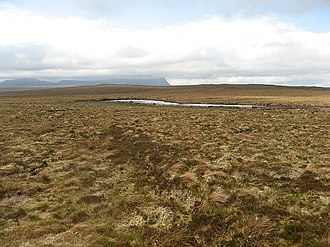 A' Mhòine - A view across the blanket bog, towards Ben Hope