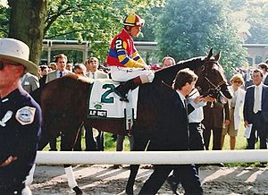 A.P. Indy - A.P. Indy before the 1992 Belmont Stakes