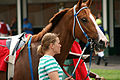 A day at Churchill Downs (11151477773).jpg