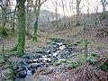A tributary of Afon Llinau - geograph.org.uk - 1094161.jpg