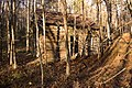 Abandoned cabin on Ridge Trail - panoramio.jpg