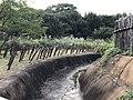 Abatis in Yoshinogari Historical Park 3.jpg
