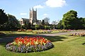 Abbey Gardens and St Edmundsbury Cathedral - geograph.org.uk - 1877489.jpg