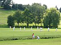 Abinger Hammer Cricket Pitch - geograph.org.uk - 523348.jpg
