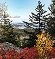 Acadia National Park (2033524d-7c64-49d3-9939-2c31ffeb73ae).jpg
