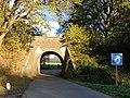 Achterberg Spoorbrug 509905.jpg