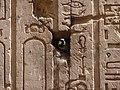 Adfo, Markaz Edfo, Aswan Governorate, Egypt - panoramio (21).jpg