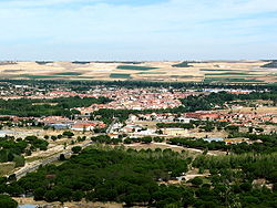 View of Tudela de Duero.