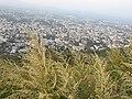 Ajinkyatara Fort by Dr. Raju Kasambe DSCN6643 (31).jpg