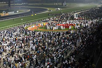 Dubai World Cup - The parade ring during the Dubai World Cup meeting