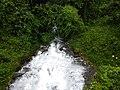 Alauva - Munnar Road Trip IMG 20170624 102248 (29).jpg