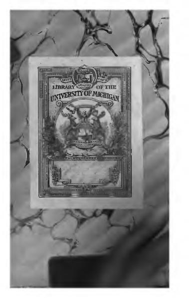File:Alméras - Avant la gloire, sér2, 1903.djvu