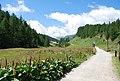 Alpe Devero - sentiero per Crampiolo.jpg