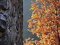 Alta Garrotxa-Rocabruna Castle 1.JPG