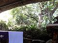 Altar of Nature Church.JPG