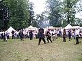 Altstadtfest 2009 21.JPG