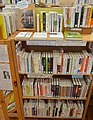 Ama Town Central Library interior ac (12).jpg