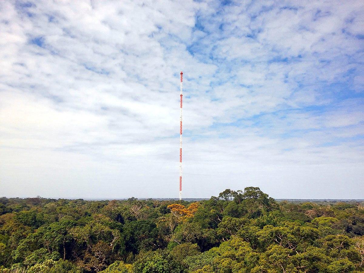 Amazon Tall Tower Observatory Wikipedia