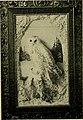 American bird magazine, ornithology (1906) (14565999977).jpg