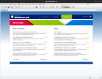 Apache NetBeans 11 Linux.png