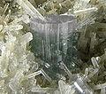Apatite-(CaF)-Quartz-273362.jpg
