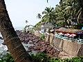 Arambol Seawall - panoramio.jpg