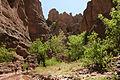 Aravaipa Canyon Wilderness.jpg