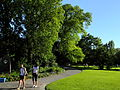 Arboretum 2012-06-14 19-01-46 (P7000).JPG