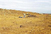 Archeologists At Work - geograph.org.uk - 1036920.jpg