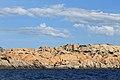 Arcipelago di La Maddalena National Park - panoramio (57).jpg