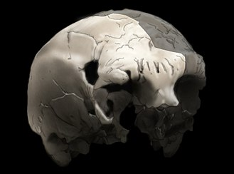 History of Portugal - Aroeira 3 skull of 400,000 year old Homo heidelbergensis. The oldest trace of human history in Portugal.