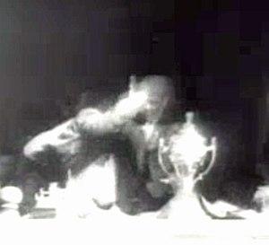 Hendrik Verwoerd - David Pratt is overpowered after he shoots Hendrik Verwoerd