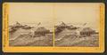 At the Cliff House, San Francisco, by Watkins, Carleton E., 1829-1916 10.png