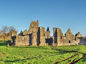 Athassel Priory - Image: Athassel Priory 1140x 1080