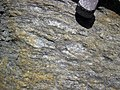 Augen gneiss (Precambrian; Rt. 93 roadcut next to the New River, Mouth of Wilson, Virginia, USA) 4 (30112152173).jpg