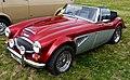 Austin Healey 3000 Replica - Flickr - mick - Lumix.jpg