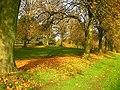 Autumn BELFAST - panoramio.jpg