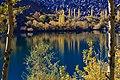 Autumnal trees in upper kachura lake.jpg