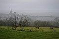 Autun (Saône-et-Loire) (31775005441).jpg