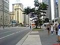 Av Paulista - Sao Paulo - SP - panoramio (2).jpg