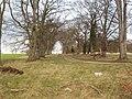 Avenue of Trees, Grange Moor near Wetherby - geograph.org.uk - 325521.jpg