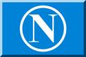 Azzurro con N cerchiata.png